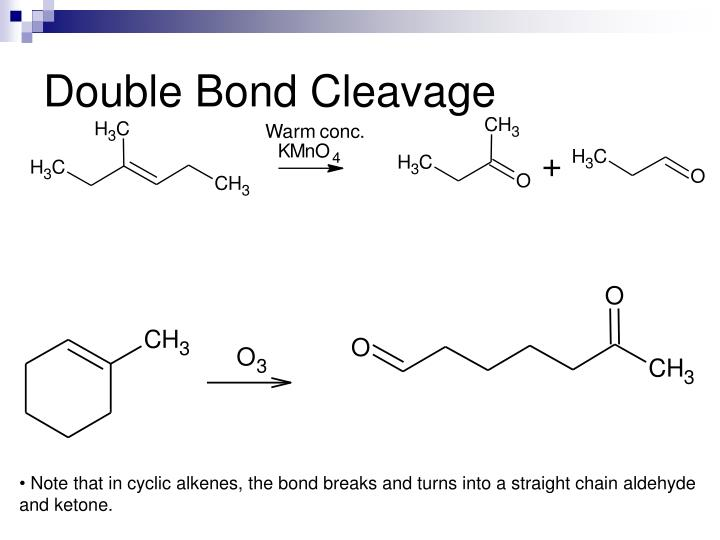 Double Bond Cleavage
