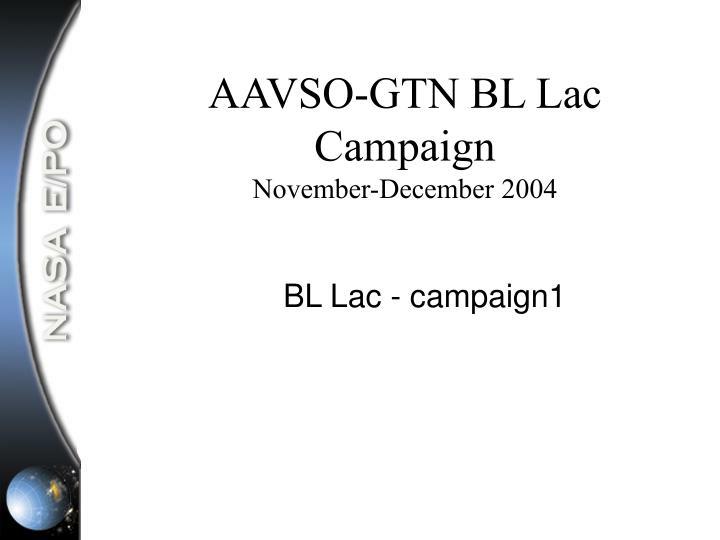 AAVSO-GTN BL Lac Campaign