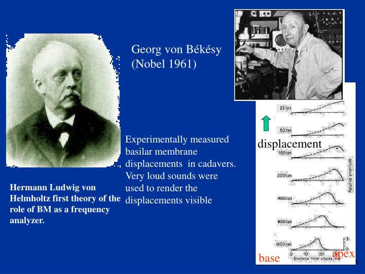 Georg von Békésy (Nobel 1961)