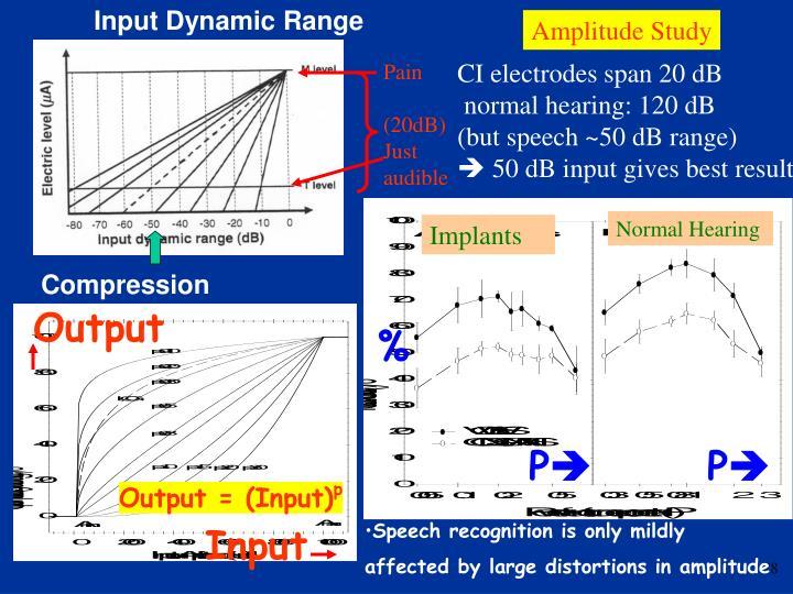 Input Dynamic Range