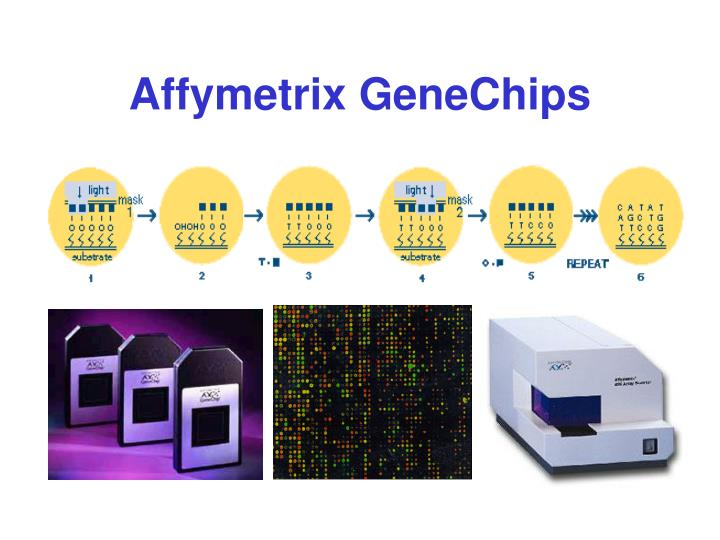 Affymetrix GeneChips