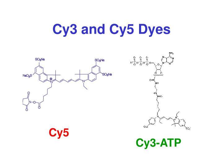 Cy3 and Cy5 Dyes