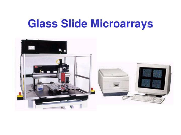 Glass Slide Microarrays