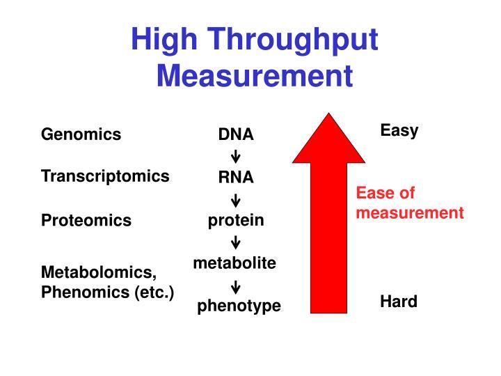 High Throughput Measurement