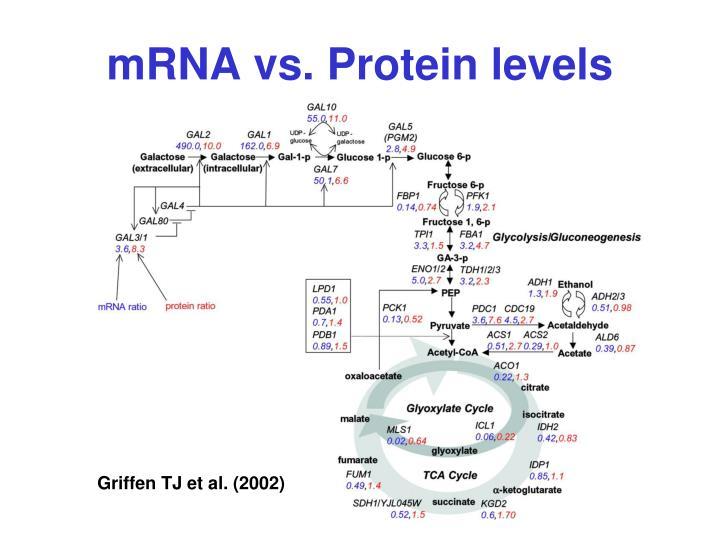 mRNA vs. Protein levels
