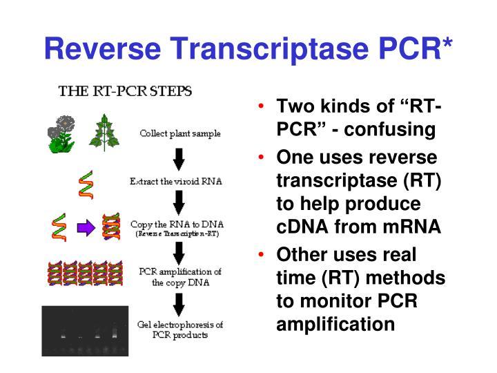 Reverse Transcriptase PCR*