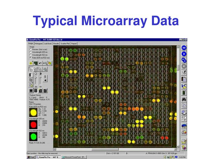 Typical Microarray Data