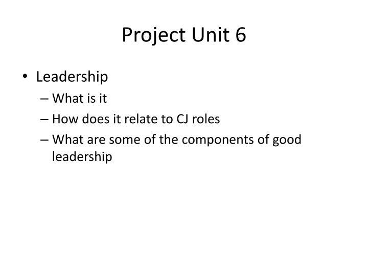 Project Unit 6