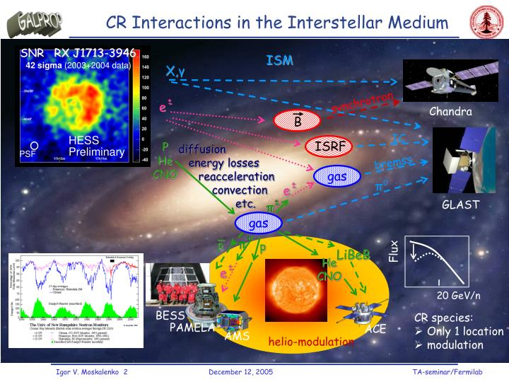 CR Interactions in the Interstellar Medium