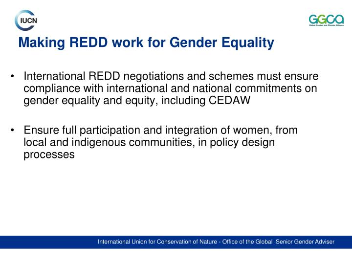 International REDD negotiations and schemes must ensure compliance with international and national commitments on gender equality and equity, including CEDAW