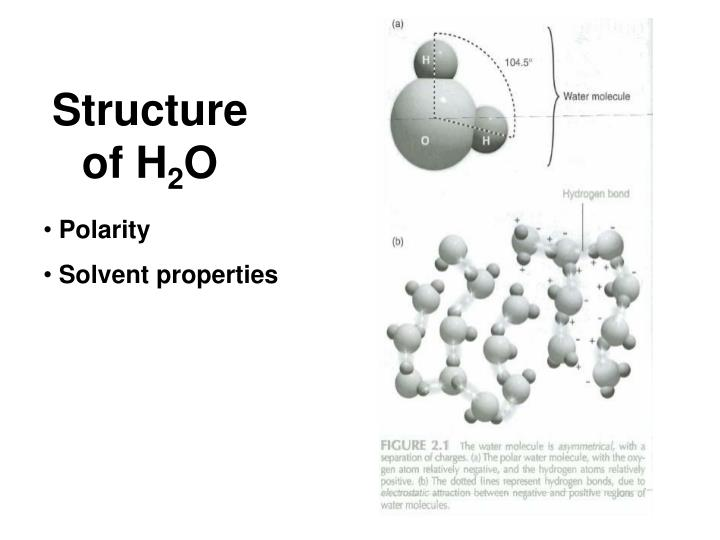Structure of H