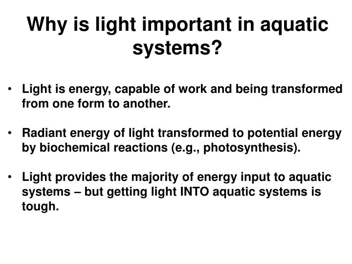 Light is energy, capable of work and being transformed from one form to another.