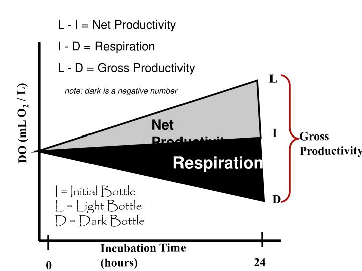 L - I = Net Productivity