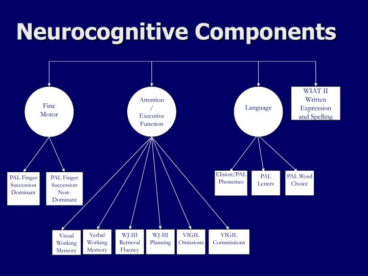 Neurocognitive Components