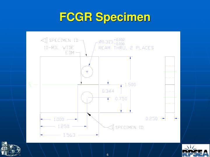 FCGR Specimen