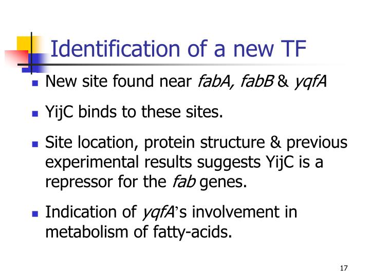 Identification of a new TF