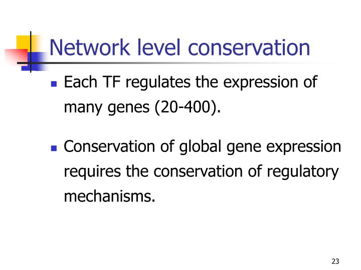 Network level conservation