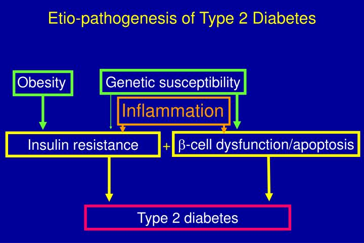 Etio-pathogenesis of Type 2 Diabetes