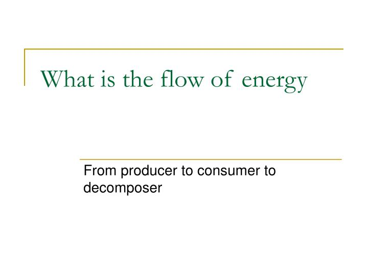 What is the flow of energy