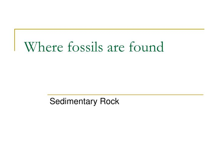 Where fossils are found