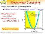 electroweak constraints