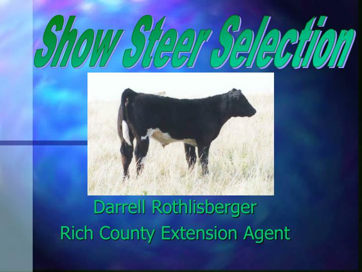 Show Steer Selection