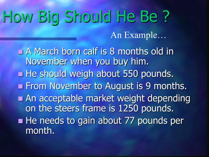 How Big Should He Be ?
