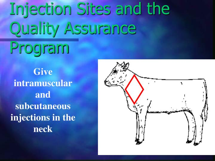Injection Sites and the Quality Assurance Program
