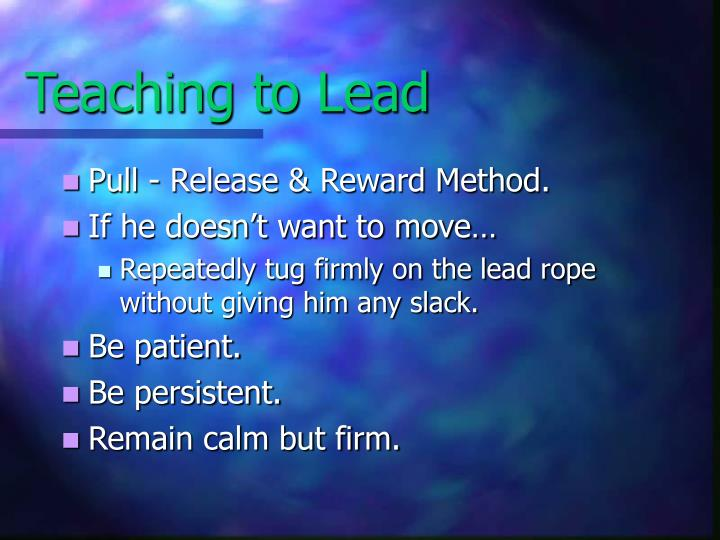 Teaching to Lead