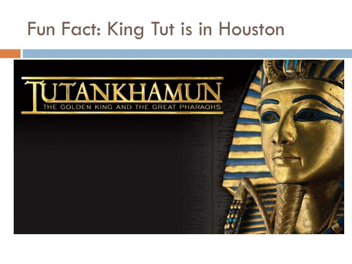 Fun Fact: King Tut is in Houston