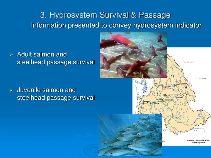 3. Hydrosystem Survival & Passage
