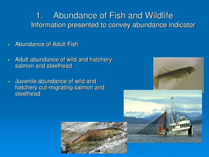 Abundance of Fish and Wildlife