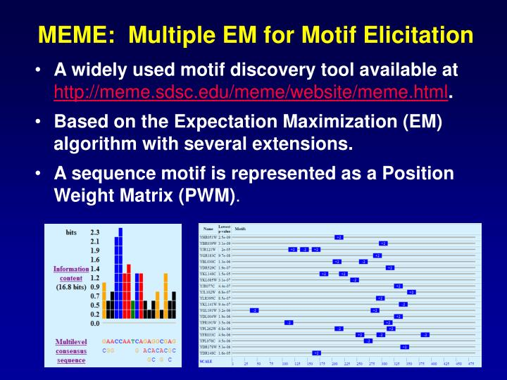 MEME:  Multiple EM for Motif Elicitation