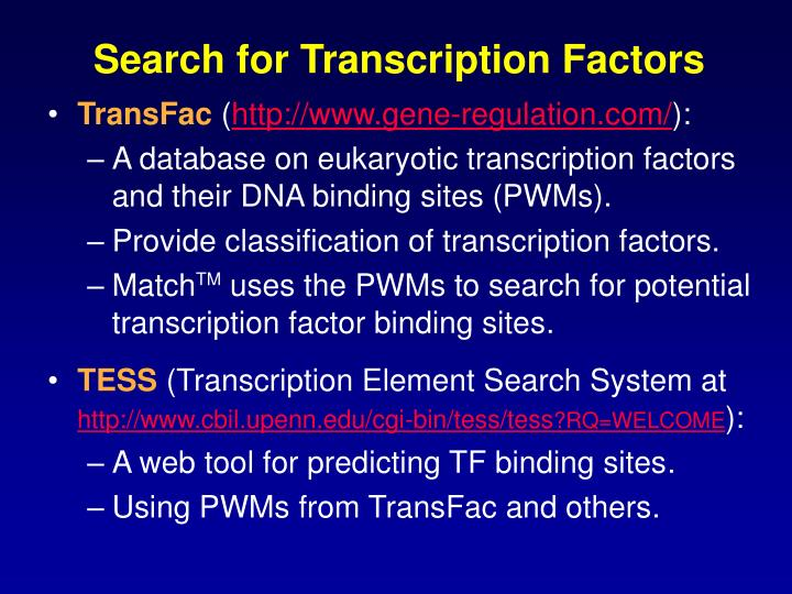 Search for Transcription Factors
