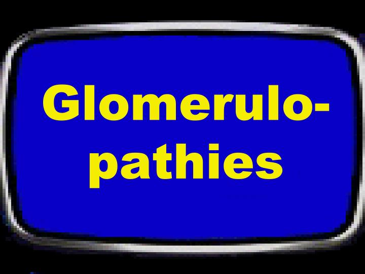 Glomerulo-pathies