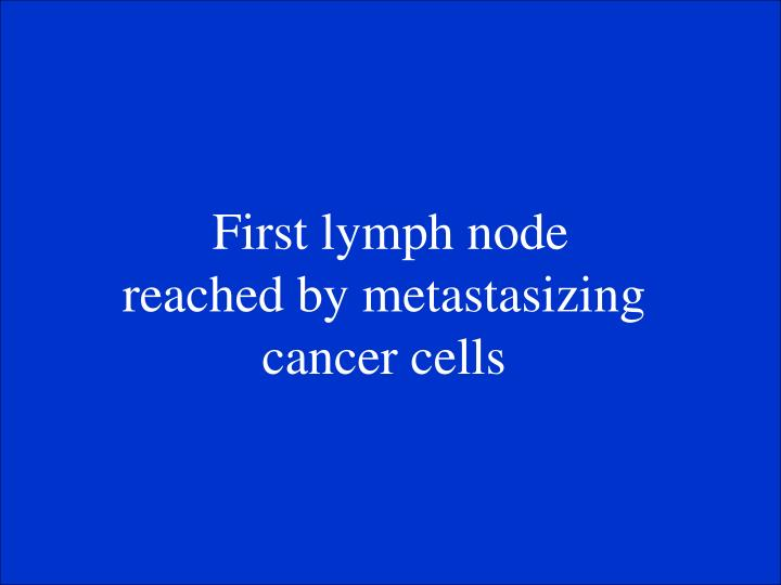 First lymph node