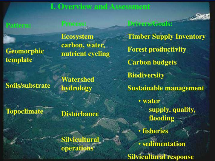 I. Overview and Assessment