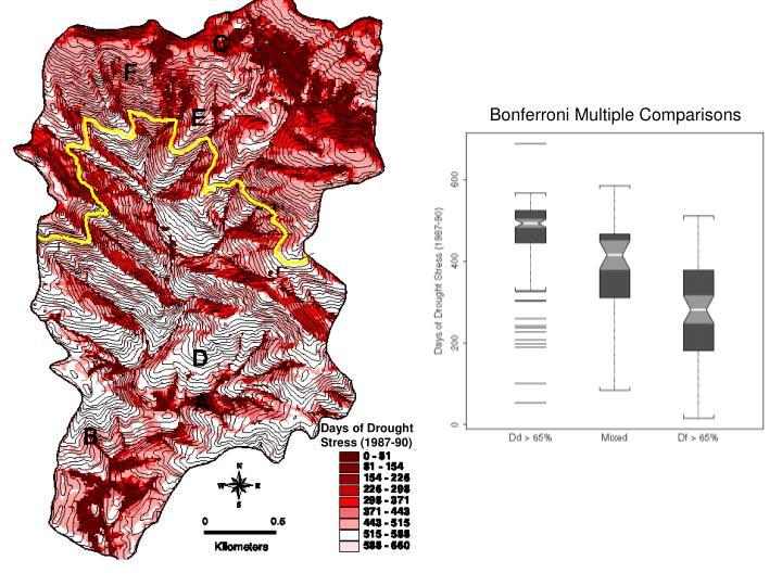 Bonferroni Multiple Comparisons