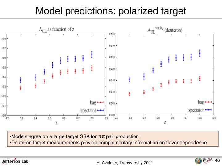 Model predictions: polarized target