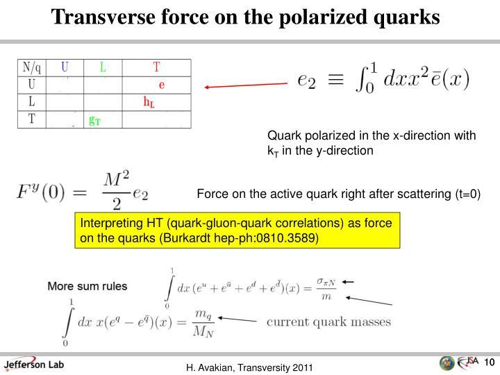 Transverse force on the polarized quarks