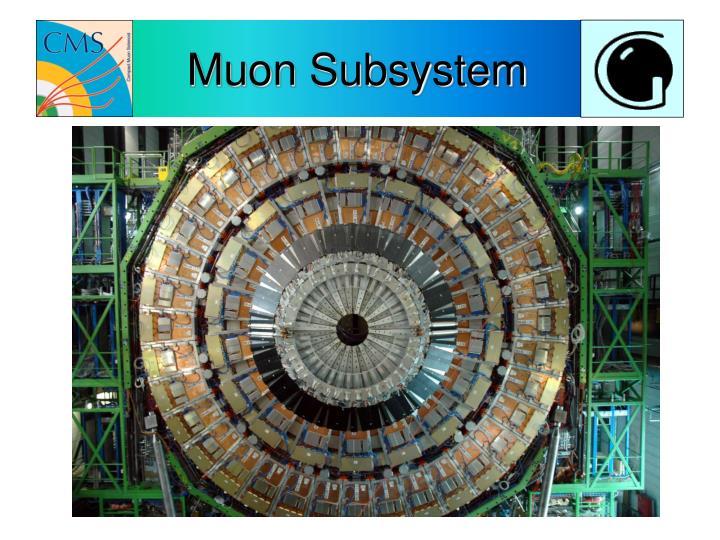 Muon Subsystem