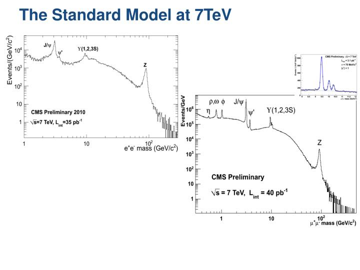 The Standard Model at 7TeV