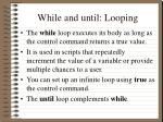 while and until looping