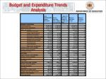 budget and expenditure trends analysis1
