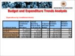 budget and expenditure trends analysis3