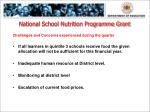 national school nutrition programme grant1