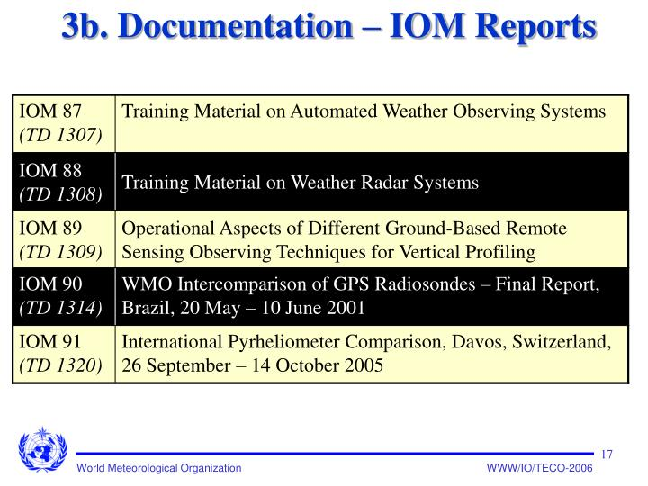 3b. Documentation – IOM Reports