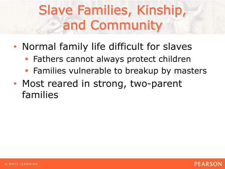Slave Families, Kinship,