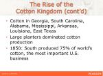 the rise of the cotton kingdom cont d