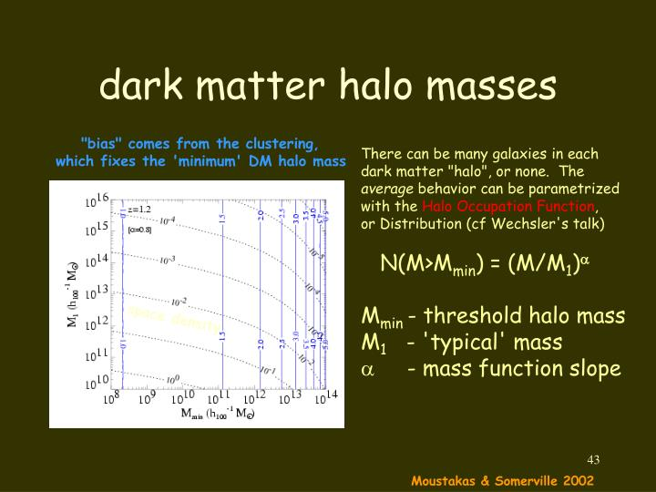 dark matter halo masses